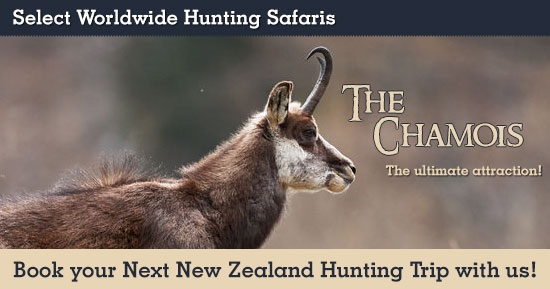 Hunting Chamois in New Zealand