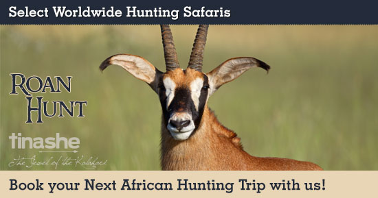 Roan Hunting in South Africa
