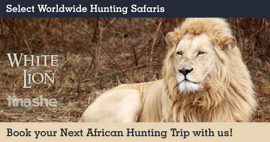White Lion Hunting in South Africa